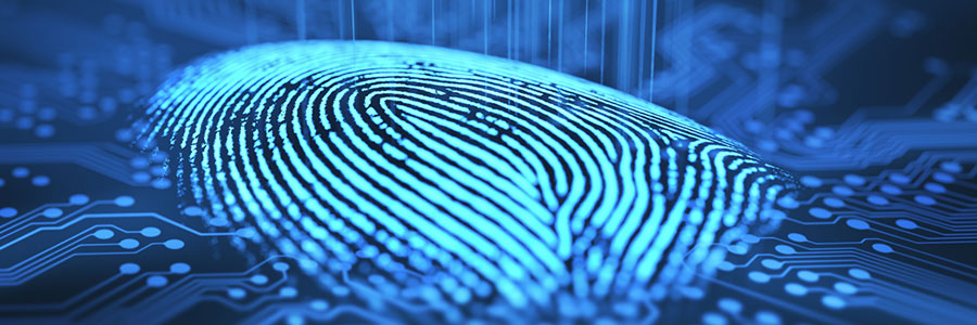 Smartphone browsers now support biometrics